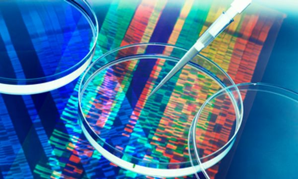 New Human Gene Tally Reignites Debate