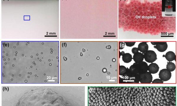 Rapid and efficient oil-water separation achieved by newly-developed particles